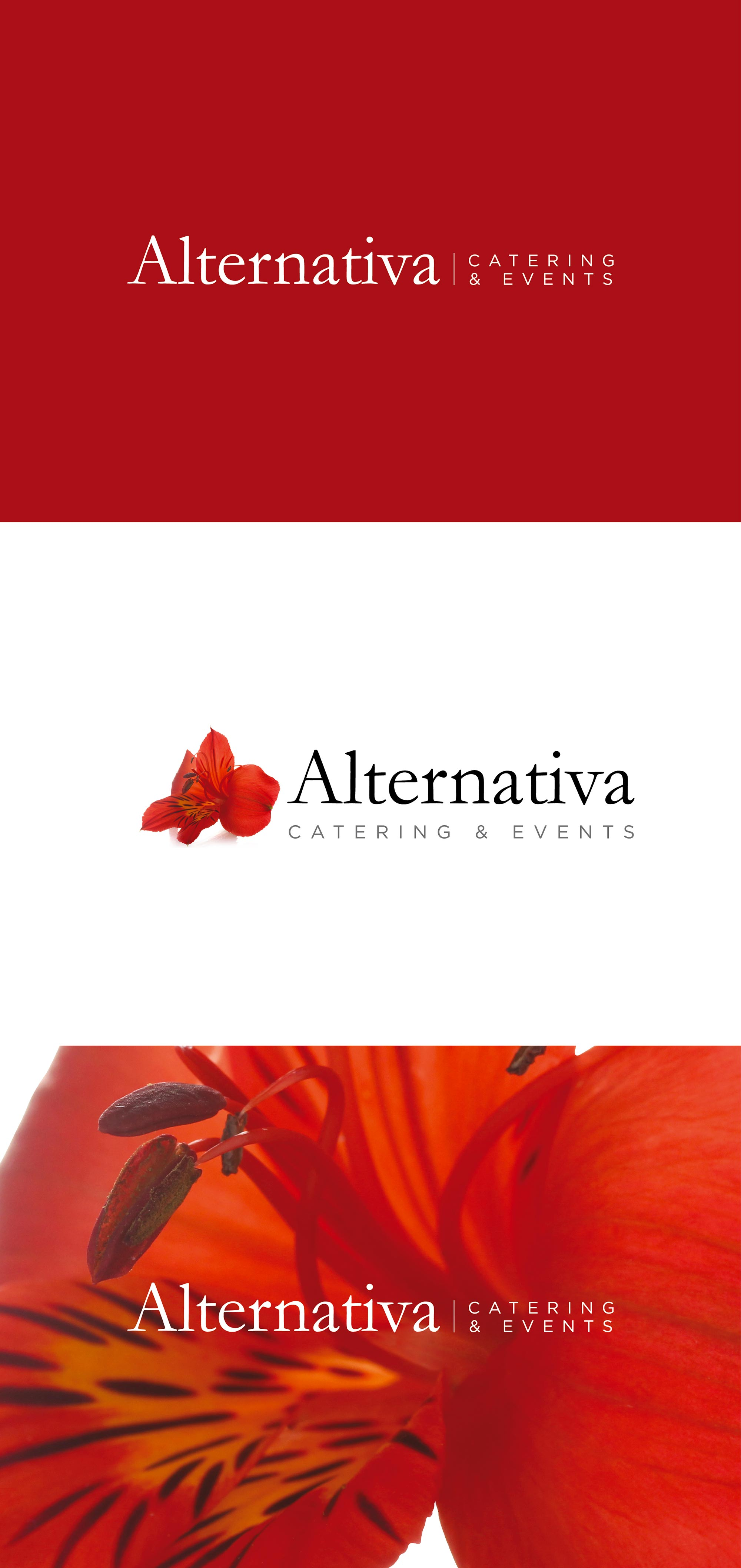 GRAFICA360_ALTERNATIVA_Logo-01